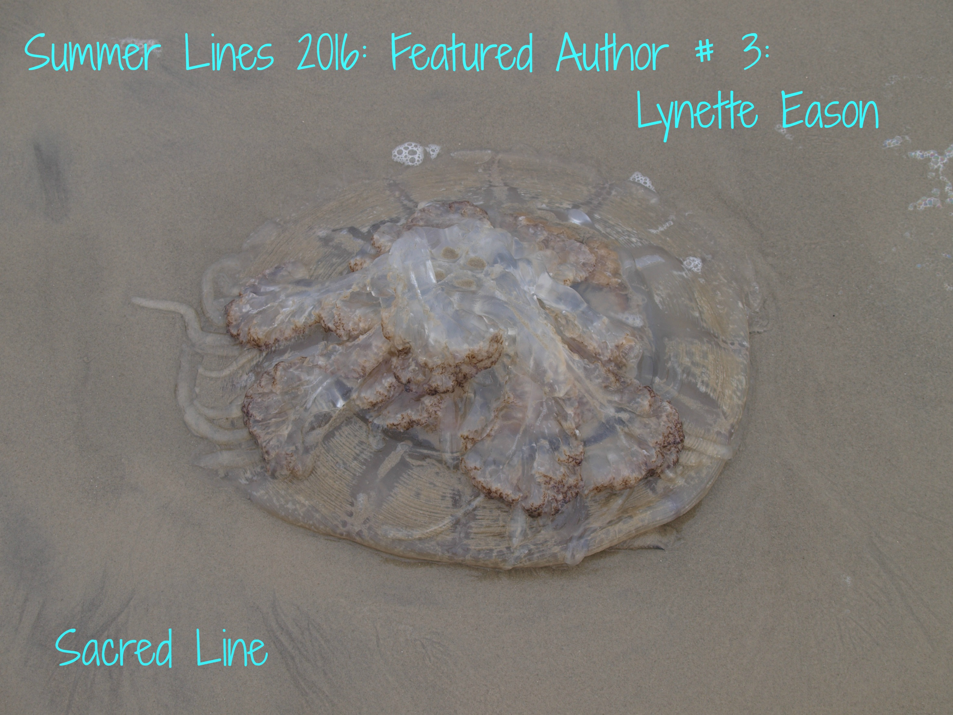"Sacred Line's Featured Author Summer 2016 ""Lynette Eason"""