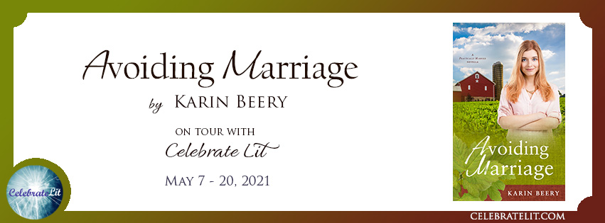 Avoiding Marriage Tour by Karin Beery